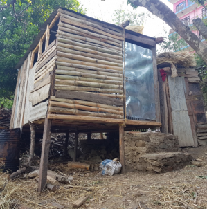 Women in Nepal still forced to sleep outside in 'menstruation huts', despite practice being criminalised, finds SRHM study